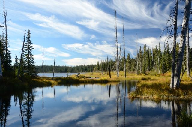 Mosquito Lake, Gifford Pinchot National Forest, WA