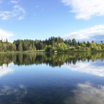 Photo of Deep Lake at Millersylvania State Park in Washington