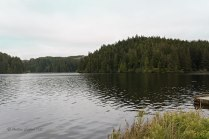 Photo of Eel Lake at Tugman State Park