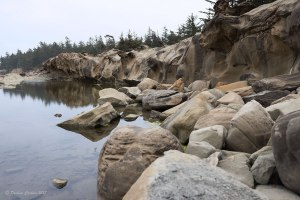 Photo of pond at Shore Acres State Park on a cliff overlooking the ocean.