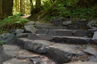 Photo of the rock steps found in Butte Creek Falls trail.
