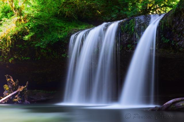 Photo of Butte Creek Upper Falls in Oregon