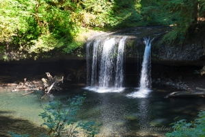 Photo of Butte Creek Falls from the trail.