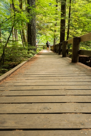 Photo of boardwalk trail at Lower Falls Campground