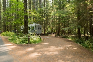 Photo of site 22 at Lower Falls Campground