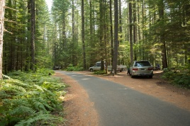 Photo of road going through Lower Falls Campground