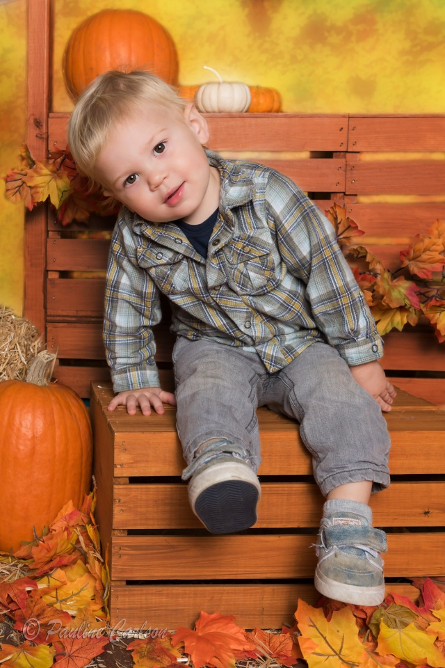 Fall photo of toddler boy and pumpkins
