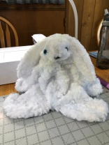 Pauline's Photography Photo of rabbit ready to stuff with fiber fill.