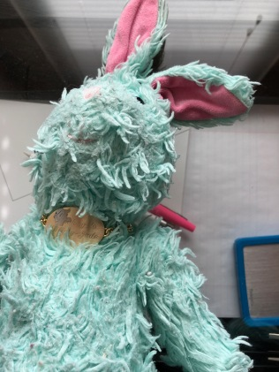 Photo of a well loved stuffed rabbit