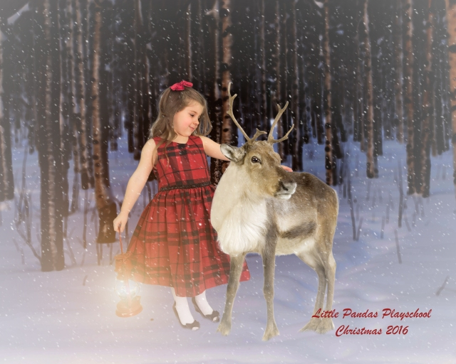 Little girl with Christmas reindeer children's photography session