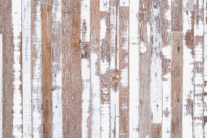 Pauline's Photography rustic wood with white peeling paint photo backdrop