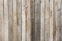 Pauline's Photography rustic old wood photo session background