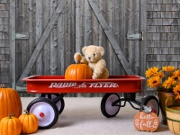 Pauline's Photography teddy bear seated in red radio flyer wagon in front of a weathered barn door