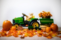 Pauline's Photography with John Deere Tractor and pumpkins
