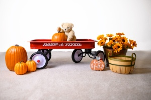 Pauline's Photography fall red wagon and pumpkins